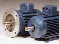 Advantage Lite Motors